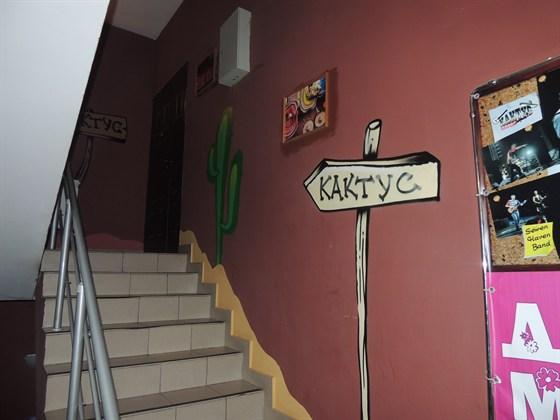 Объявления клуб кактус на динамо Радиоэлектронные